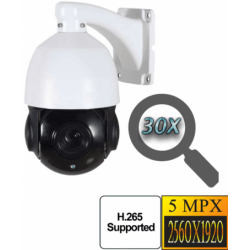 Уличная купольная поворотная IP POE камера 5.0Mp c 30х зумом Millenium 39P PTZ
