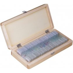 Набор микропрепаратов для микроскопа Bresser (Брессер) 50 шт., в кейсе