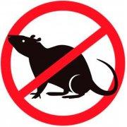 Отпугиватели крыс