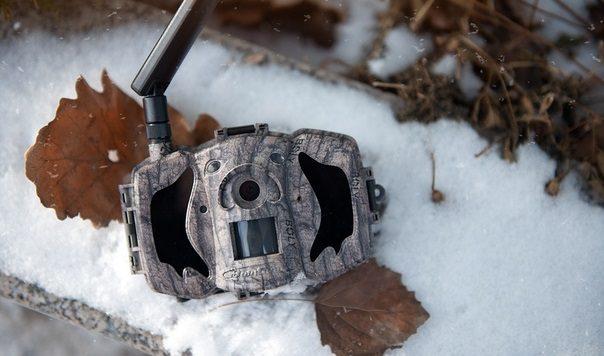 Фотоловушка для охоты и охраны с MMS и функцией манка Boly Guard MG984G-36M